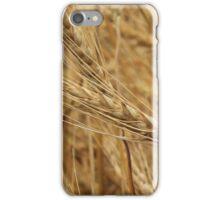 Head of Grain iPhone Case/Skin