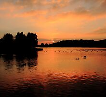 Sunset on the Lake by Paul Bettison
