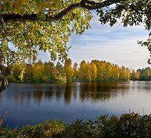 River Oulujoki, autumn by finnarct