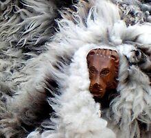 Lion in sheep's clothing by patjila