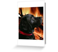 Warming Greeting Card