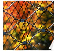 Caged autumn Poster
