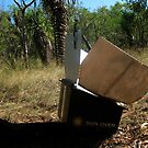 SOLAR COOKING with CARBON SUPPORT by NAGILLAH
