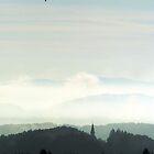 Ballon in morning by heridon