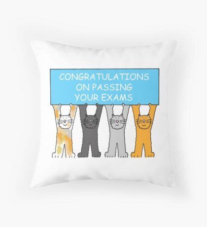 Congratulations on passing your exams. Throw Pillow