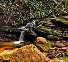 Leura Cascades #1 by VanceRoyce