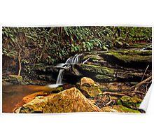 Leura Cascades #1 Poster