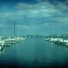 Marina © by Dawn M. Becker