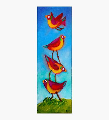 Bird Stack Photographic Print