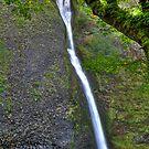 Horsetail Falls by Bob Hortman