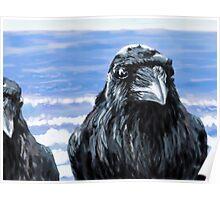Ravens on the Coast Poster
