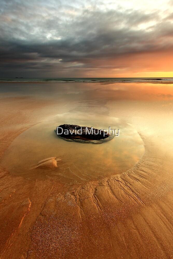no man is an island.... by David Murphy