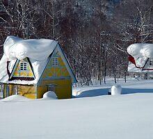 Snow Cabins, Rusutsu, Hokkaido, Japan by Mike Banks
