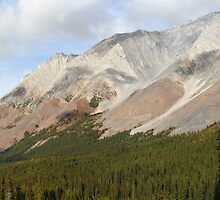 Forests of Rockies by zumi