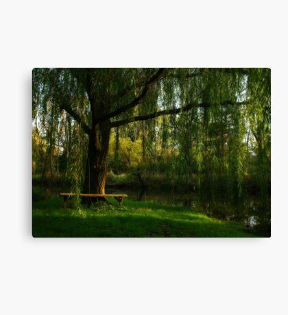 Beneath the Willow Canvas Print