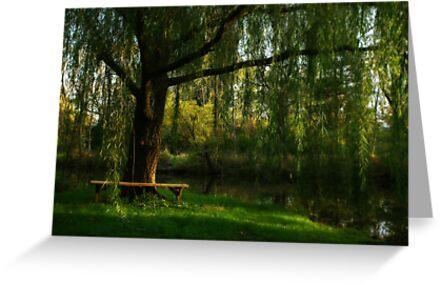 Beneath the Willow by Lori Deiter