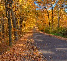 Golden Highway by ECH52