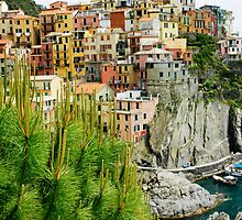 Vernazza, Cinque Terre by Harry Oldmeadow