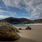Wilsons Promontory by Greg Thomas