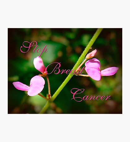 Stop Breast Cancer Photographic Print