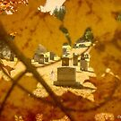 Cool Colorful Cemetery by Debbie Robbins