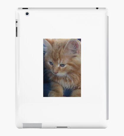 The precious kitten iPad Case/Skin