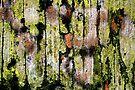 Painters & Decorators by richman
