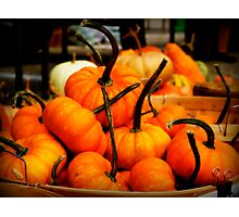 Baskets of Autumn Photographic Print
