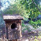 Gampaw's Birdhouse by Dan McKenzie