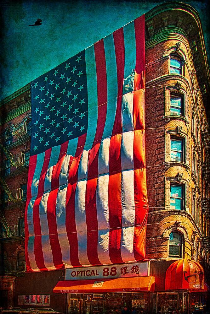 The Big Big Flag, New York City by Chris Lord