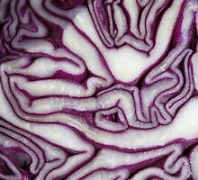 Crazy Cabbage by Creativecap