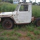 Rob's Ute by 4spotmore