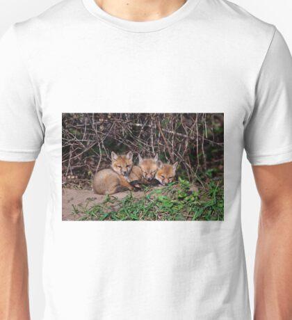 Fox Kits 8 Unisex T-Shirt