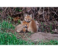 Fox Kit 7 Photographic Print