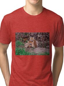 Fox Kit 7 Tri-blend T-Shirt