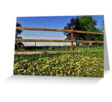 Buttercup! Greeting Card