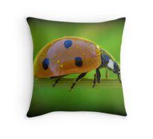 Ladybug Pollen Throw Pillow