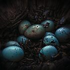 The Bad Egg  by Michelle  Morris