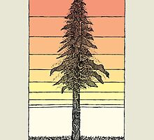 Coastal Redwood Sunset Sketch by Hinterlund
