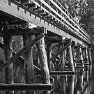 Railway Bridge by pennyswork