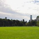 Sheep Meadow in Central Park Panel 1 by Sarah McKoy