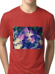 Tall Bearded Iris - German Iris Stock If you like, please purchase, try a cell phone cover thanks Tri-blend T-Shirt