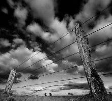 #2 Cloud Fence by Murray Wills