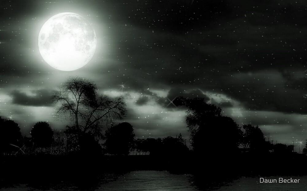 Nature's Night Light © by Dawn Becker