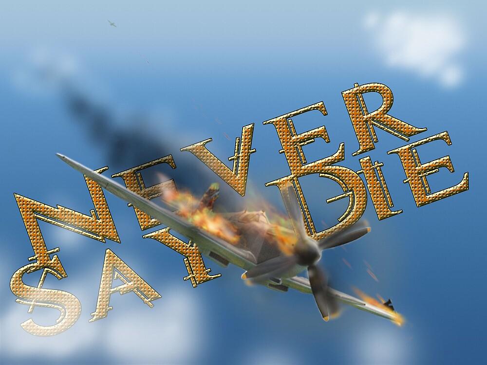 Never Say Die by Tony Brown