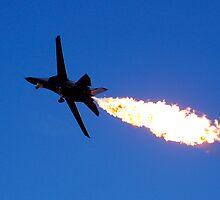 F-111 by Lauren Waters