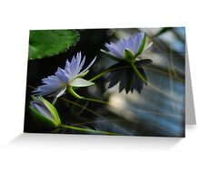 The Water Lily Series #3 Greeting Card
