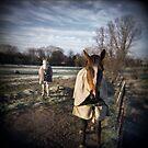 Winter Horses by Steve Lovegrove
