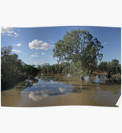 Darling River Bypass, Louth, NSW. Poster