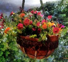 Summer Picture Window by RC deWinter